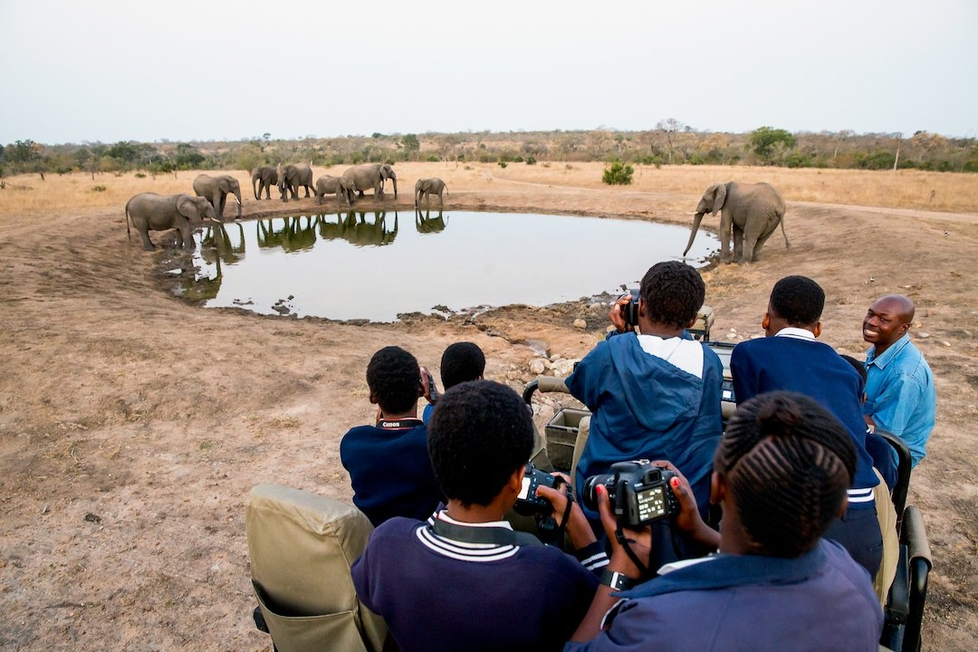 A Wild Shots Outreach group encounter a herd of elephants at a waterhole, Sabi Sand Game Reserve.